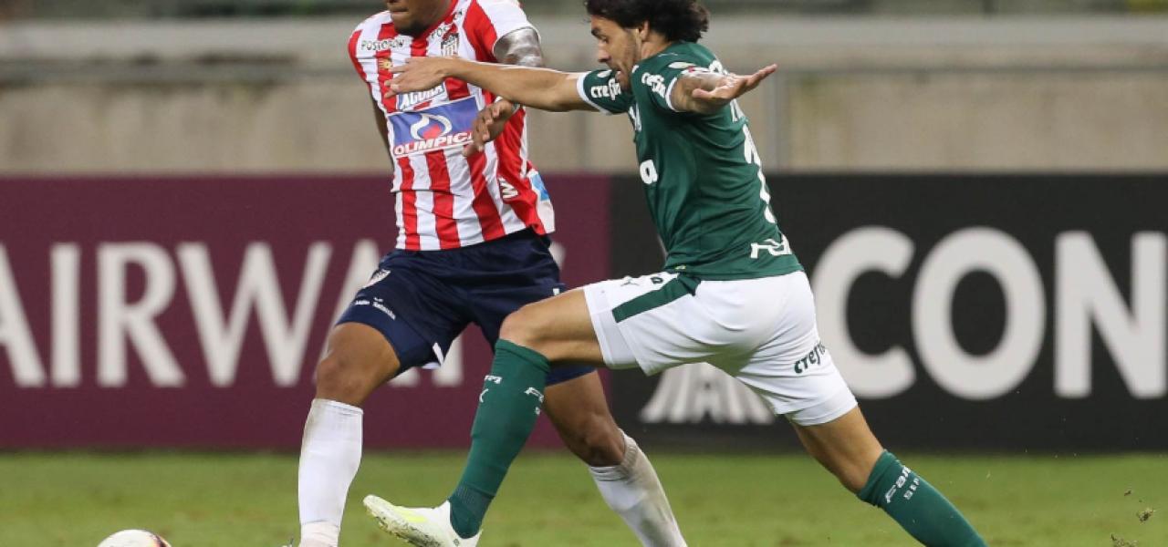 Carlos Greco (Palmeiras)